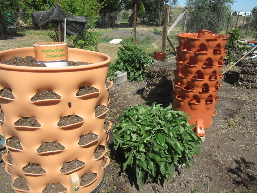 A Plant Tower That Can Grow 50 Plants In 4 Sq Ft Gardensall Containers