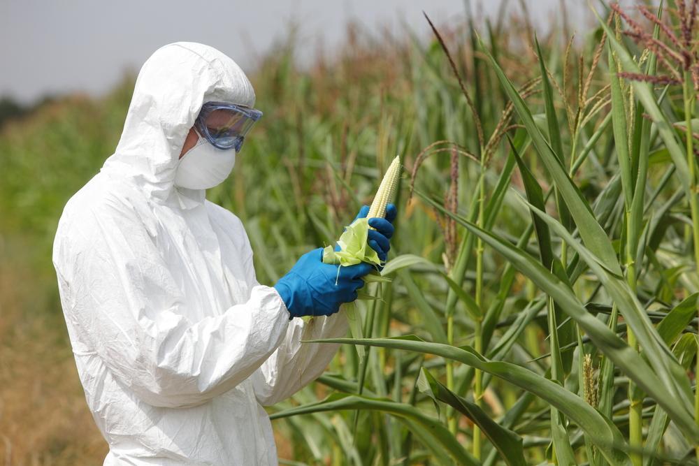 organic farm, non-organic farming, farming with pesticides