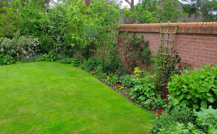 Edible Fence, Garden