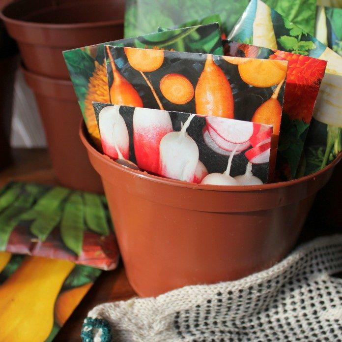saving seeds, seed storage