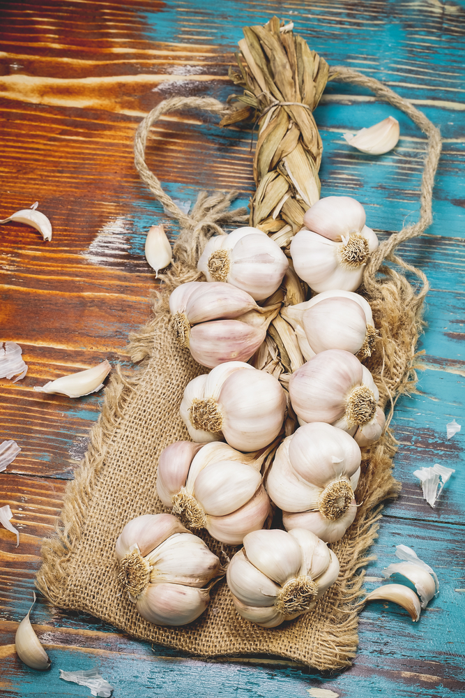 how-to-prep-garlic