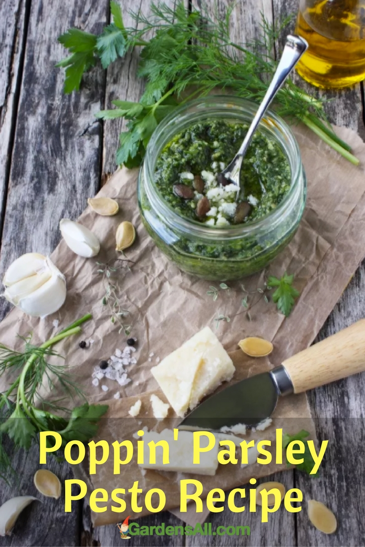 """Pesto is one of my favorite sauces because it's so light and adds a """"summer"""" flavor to a dish. Also, it's extra special when we can use garden veggies, nothing compares to the home-grown flavor!"""