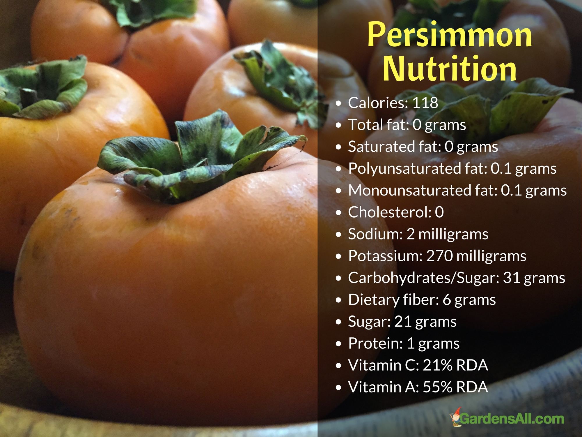 Persimmons have a multitude of beneficial properties that assist in keeping the body healthy besides being tasty.