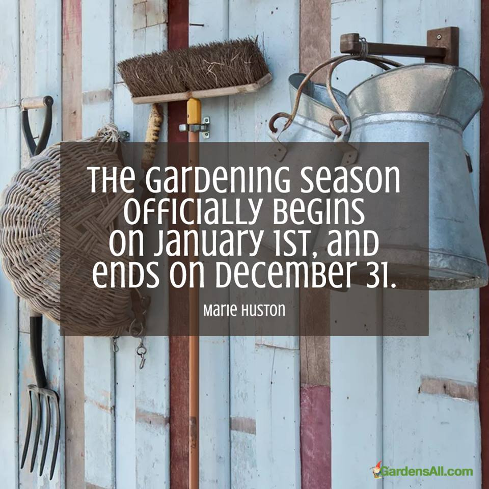 Gardening Season - Year round!