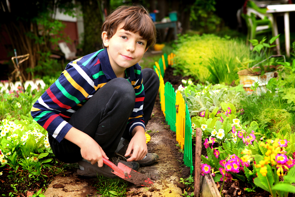Boy in the gardening, children gardening