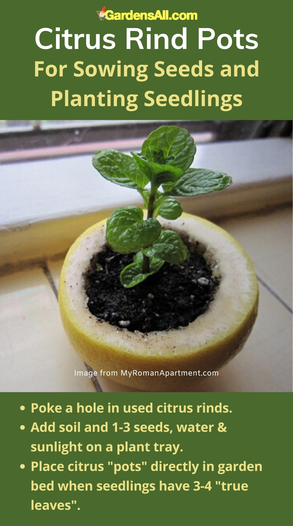 Citrus Rind Pots for Sowing Seeds and Planting Seedlings #IndoorGarden #Planters #GardenIdeas #GardenTips #GardenTools #ContainerGardening #Gardening