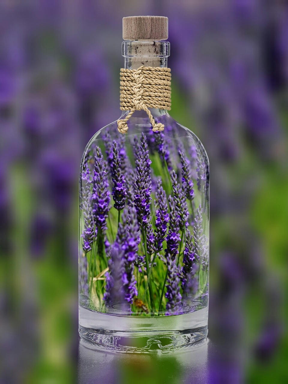Lavender Recipes, Lavender Extract is easy to make and beneficial to have on hand. #LavenderRecipe #HowToMakeLavenderOil #GardensAll