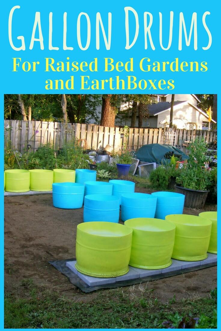 """Got drums? They can be great for raised bed gardens, earth boxes, rain barrels and aquaponics. If you happen to have old storage drums around, this is an idea for you. If you don't, there are sources for new, recycled and refurbished drums."" #gallondrums #bedgardens #gardening #yards #howtobuild #landscape #backyards #plants #howtomake #outdoor #ideas #tips #design #diy #simple #smallspaces #projects #videos #containergarden #pots #planters #gardener #raised #forbeginners #gardentool #pallet #frontyards #landscaping #howtogrow #layout"
