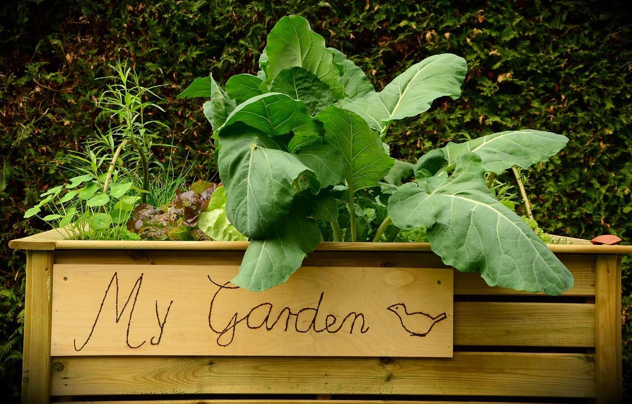 Layered Garden Beds No dig no till Easy Garden Method GardensAll