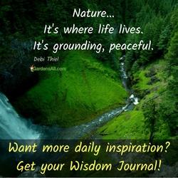 wisdomjournalpreorder.gr8.com