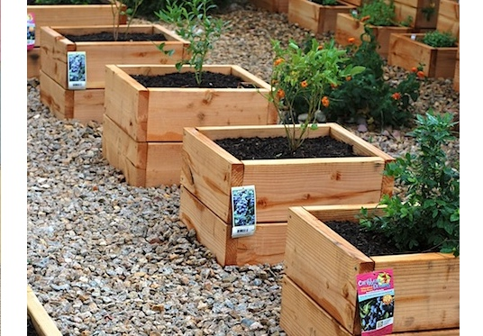 Mini raised garden beds are great for small areas and patio gardening. #MiniRaisedGardenBeds #GardenPlanters #PlanterBoxes