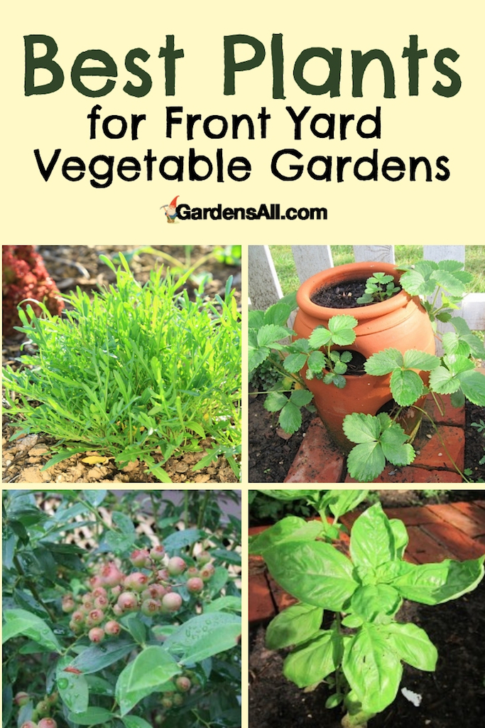 Convert your front lawn into a gardenscape. No more mowing... instead, you can harvest bounties of fresh garden vegetables, herbs, flowers and fruits! #NaturalGardening #Gardening #GardenIdeas #FrontYard #Urban #Landscaping #DIY