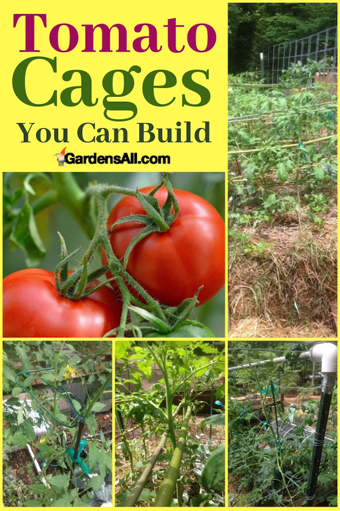 DIY tomato cages and stakes.  #GrowingTomatoes #TomatoTrellis #TomatoCagesDIY #StakingTomatoes  #TomatoSupports #GrowingTomatoes #VegetableGardening
