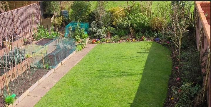 Edible Hedge in UK Garden. #EdibleLandscape EdibleHedge #BackyardGardens