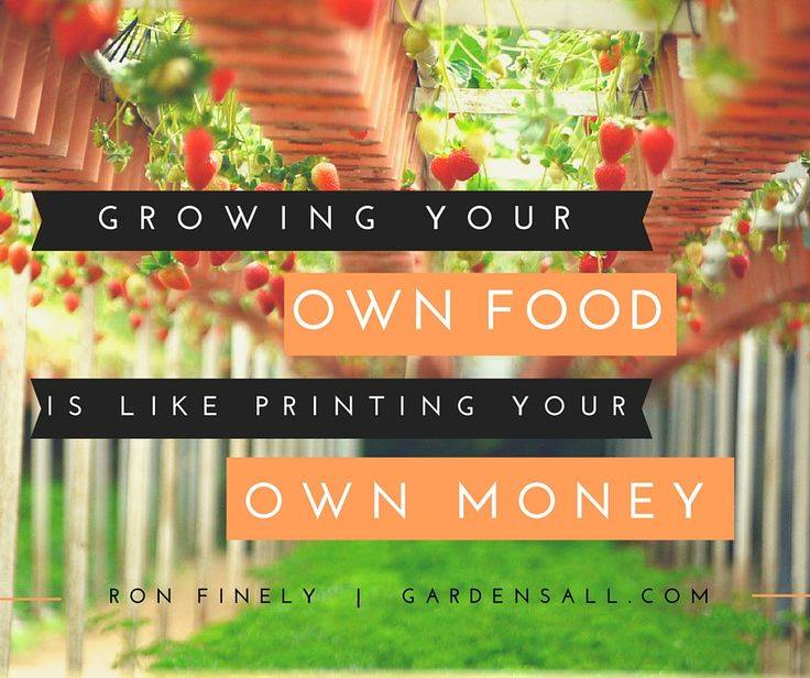 """Growing your own food is like printing your own money."" -Ron Finely #GardenQuotes #Inspirational #Funny #Signs #Wisdom #Short #Flower #Vegetable #Simple #Life #Fairy #Happy #Cute #Family #Sayings #Enchanted #Hilarious #Botanical #Growing #Zen #Rose #Spring #Herb #Aesthetic"
