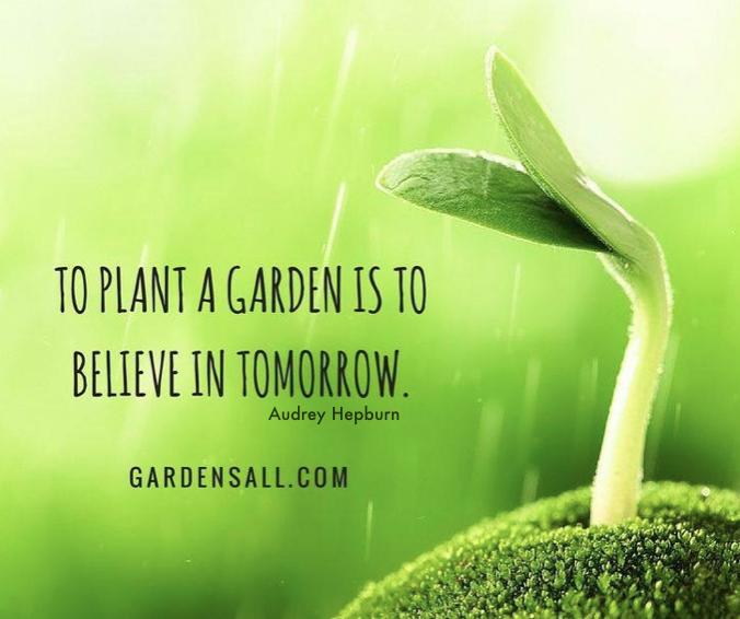 To Plant a Garden is to Believe in tomorrow, Audrey Hepburn Garden Quote #AudreyHepburnGardenQuote #GardenQuote #PlantAGardenQuote #BelieveInTomorrowQuote #GardensAll