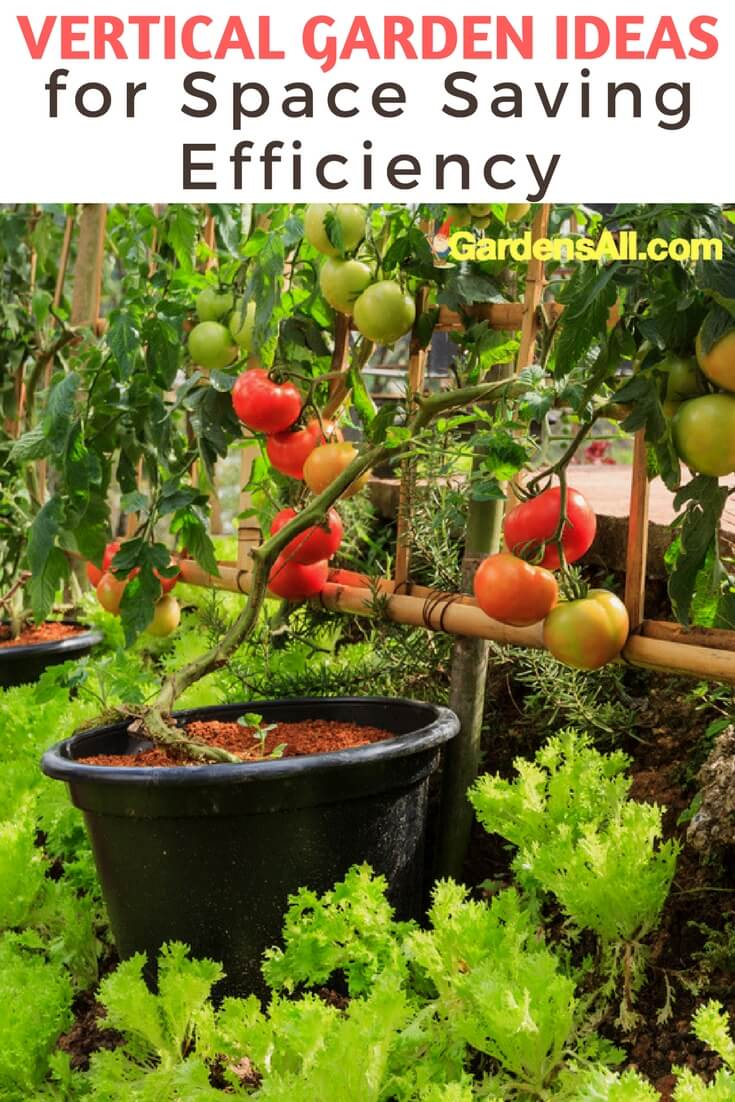 Vertical Garden Ideas for Space Saving Efficiency - Over the years, we've experimented with a number of vertical vegetable garden ideas. While we live on 4.5 acres, most of that isn't farmable, plus we're in the woods, where adequate sunny areas are limited.