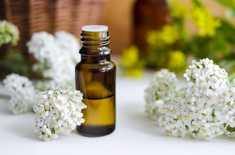 Yarrow for Cold and Flu, immunity boosting. Nature's medicine. #Yarrow #YarrowFlowers #BestForImmunity #NaturalRemedies #YarrowForColdAndFlu #HerbsForColdAndFlu #HerbalRemedies #NaturalHealing #PreventiveMedicine