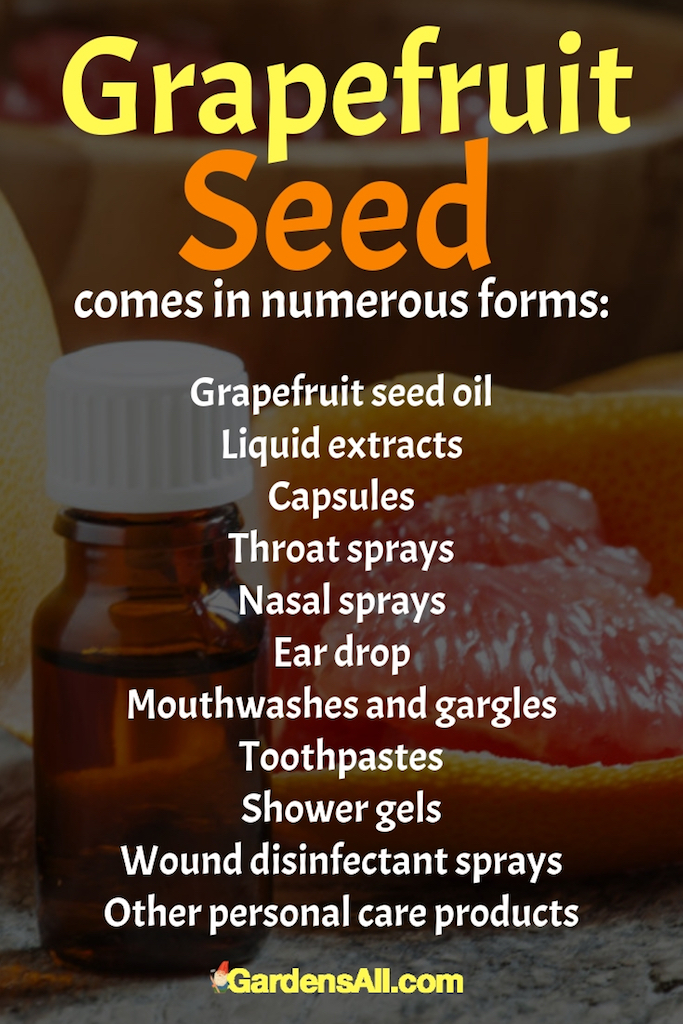 We've just ordered one of the more popular forms of grapefruit seed extract, Citicidal. We'll update here when we have more to add from our own experience. #Grapefruit #GrapefruitSeed #GrapefruitBenefits #HealthBenefits #Recipes #Homemade #Fruits #Fruit #Remedies #ToGrow #ForPain #HowToMake #Tips #Flu