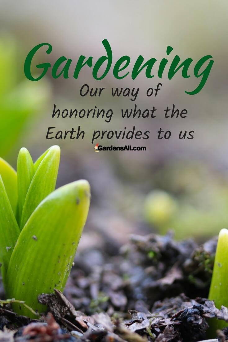 HAPPY EARTH DAY! Gardening is one of the best ways to honor both the Earth and helping it flourish, and our bodies for the health of fresh foods!  It's like a two-of-one deal.