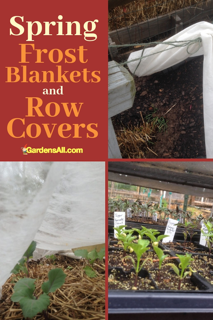 What's the difference between the two? Frost blankets are thicker and serve more specifically to help keep the plants warmer. Floating row covers are thinner and lighter weight, and while they also keep the frost off, they can be used during the day for growing under as well. #Vegetable #Ideas #Raised #Flower #Design #Container #Backyard #Tips #Herb #Landscaping #InPots #Indoor #Rose #Organic #Shade #Boxes #Urban #Pallet #Planters #Outdoor #wintergarden #summergarden #fallargen #springgarden #verticalgarden #gardentips #DIY
