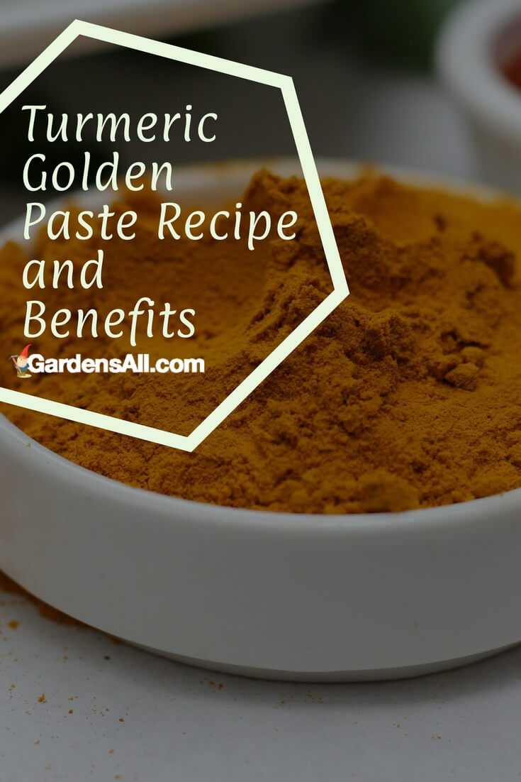 Turmeric Golden Paste Recipe and Benefits | GardensAll