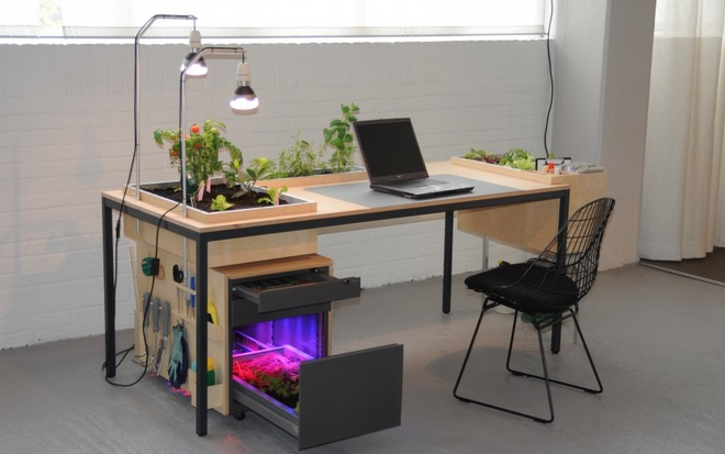 office gardens. A Desk Garden For Office Plants And Indoor Gardening Gardens