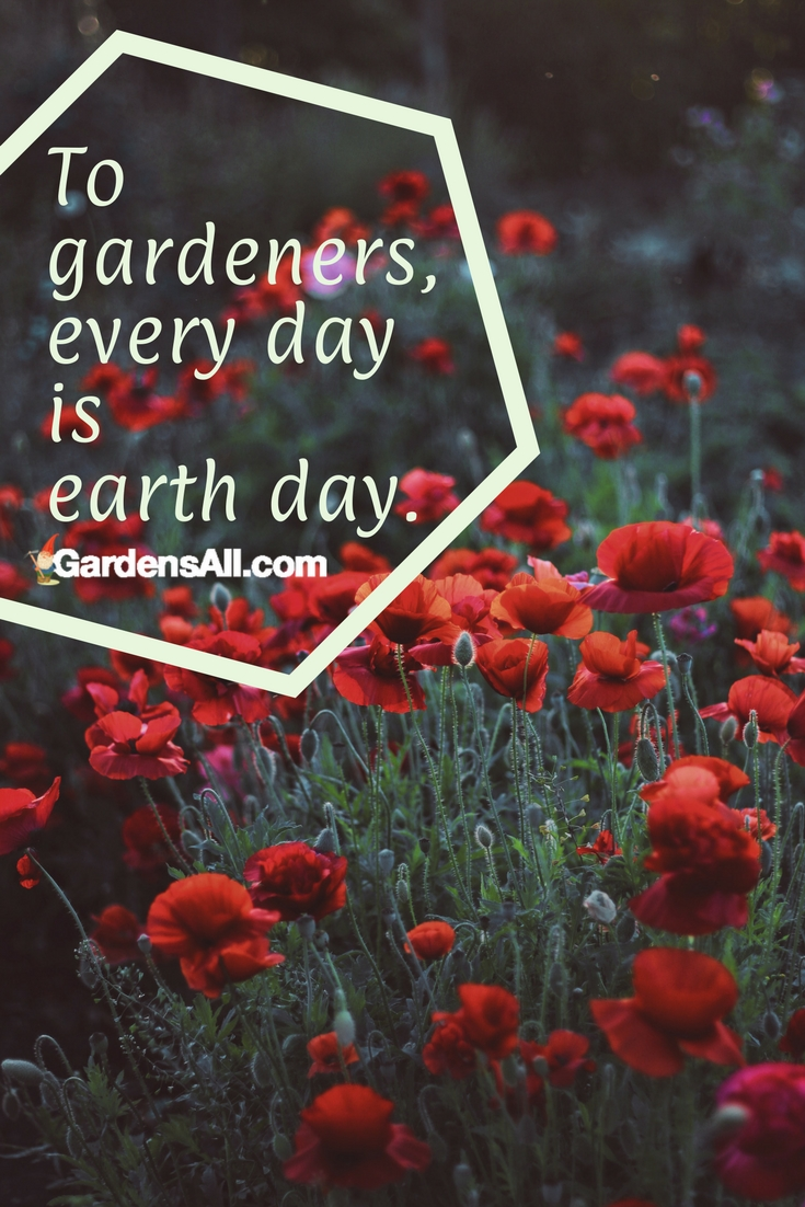 For gardeners and nature lovers, every day is earth day. One of the things we appreciate about gardeners is that most tend to be pragmatic, frugal and well acquainted with common sense. Something about working with the earth and wisdom of nature does that.