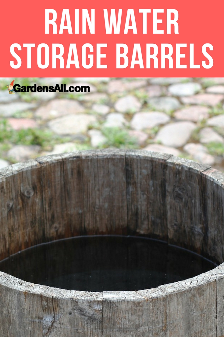 Did you know just ¼ inch of rain coming offof a 20 by 20 foot Rainwater roof will fill a 60-gallon barrel? And that those 60 gallons will cover up to 100 square feet with an inch of water? Rain water storage barrels are an awesome way to water your garden.
