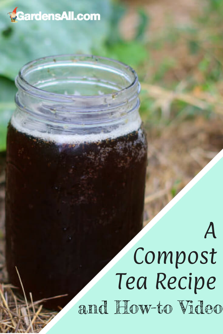 "Care for a ""cup of rosy"" for your posies? Your plants will love ""tea time"" when it's organic compost tea, aka liquid fertilizer!"