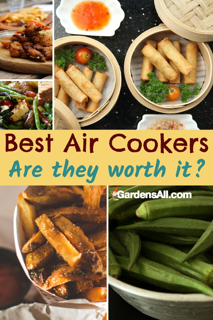 Though the names are used interchangeably, we think Air Cooker is the most descriptive term because these oil-less cookers don't only fry foods... nor are they only oil less #AirFryer #AirFryerRecipes #AirCooker #OilLessFryer #MustHave #Appliances #Kitchen #Recipes