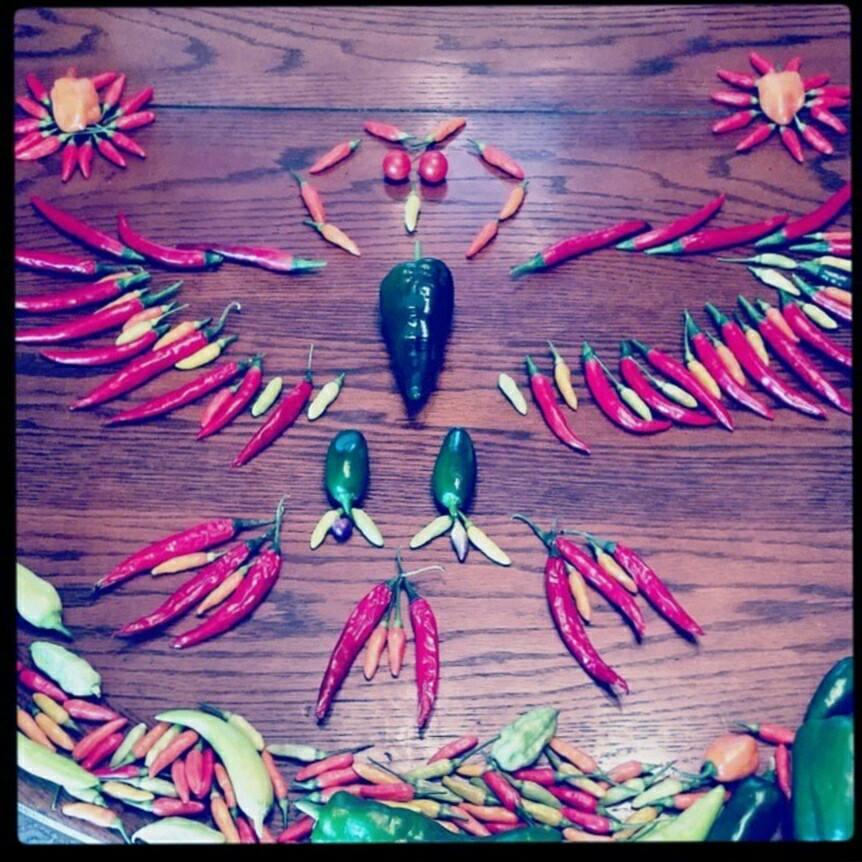 Pepper art