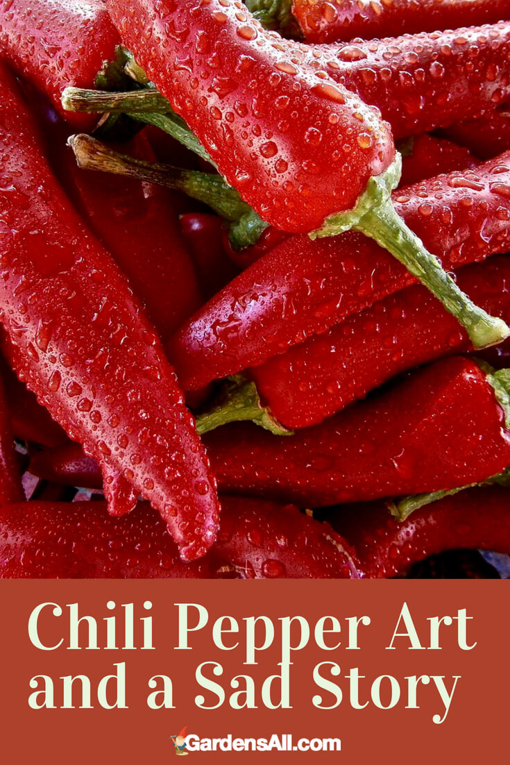 If you love peppers and hot sauce, you're not alone. Many people are big fans of hot chili peppers, from connoisseurs who swear they can tell a difference in the numerous types to those who go for the hottest of the hot and like to burn holes in their mouth. Hot sauce and pepper sauce is big business, and chili art is a thing too.