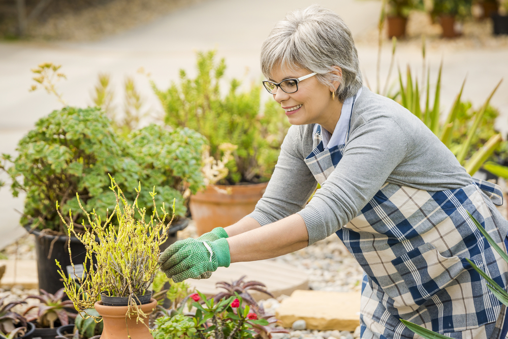 baby boomer lady gardening