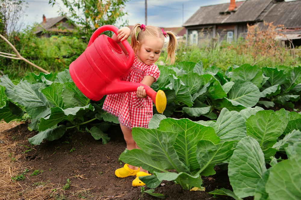 gardening communities, kids gardening, little girl in garden