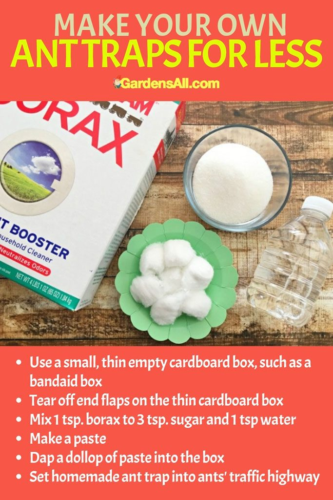 So for that you can use the ant traps or poison syringes, or make a homemade version using cornstarch and boric acid stirred into a paste. #Vinegar #VinegarForCleaning #VinegarWeedKiller #AntKiller #Cleaning #AntSprayDIYHomeMade #Disinfectant #WeedKiller
