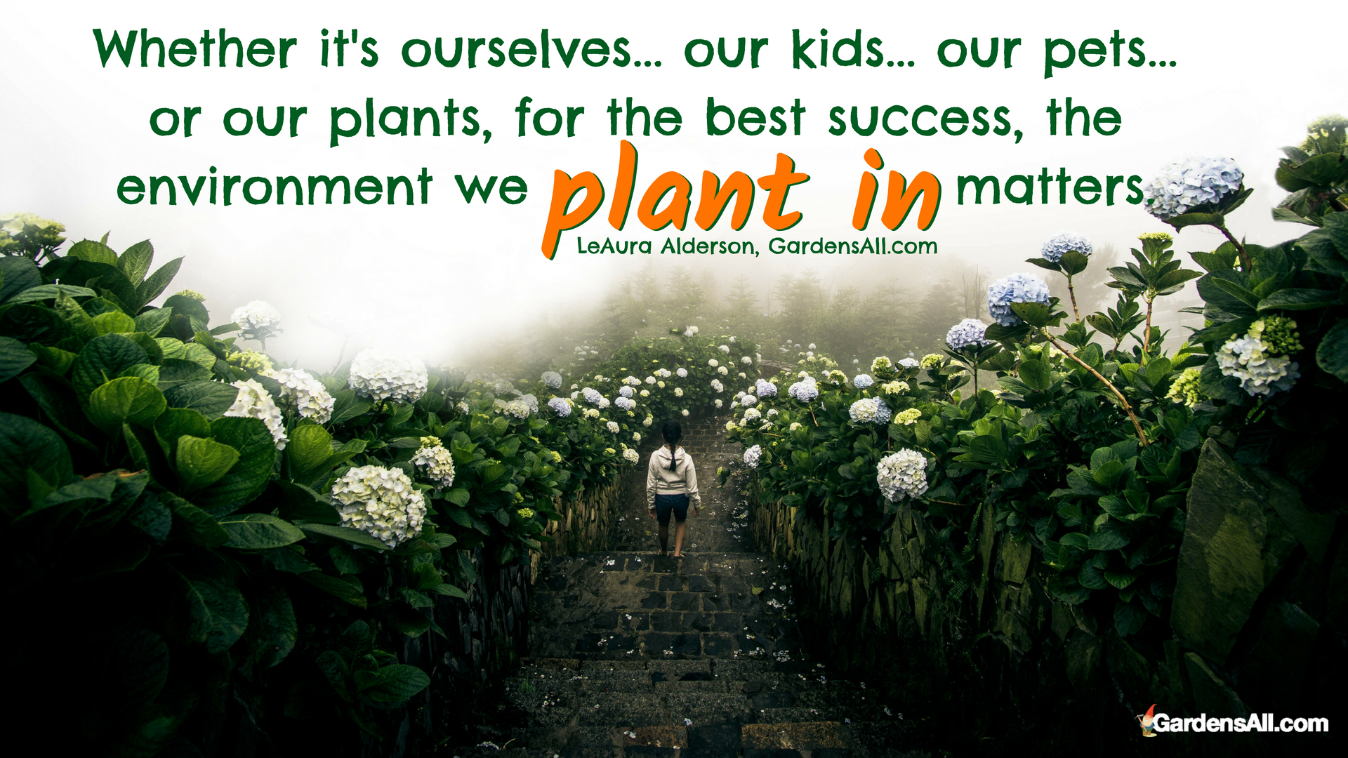 garden meme, garden quotes, garden success