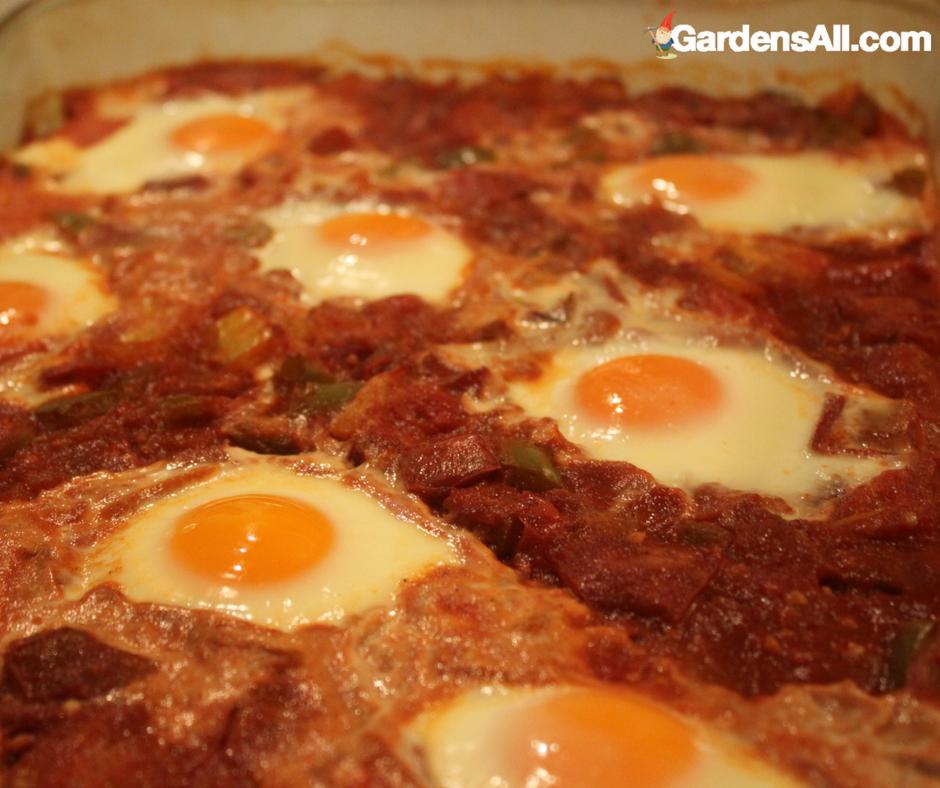 Shukshaka, egg in tomato sauce dish