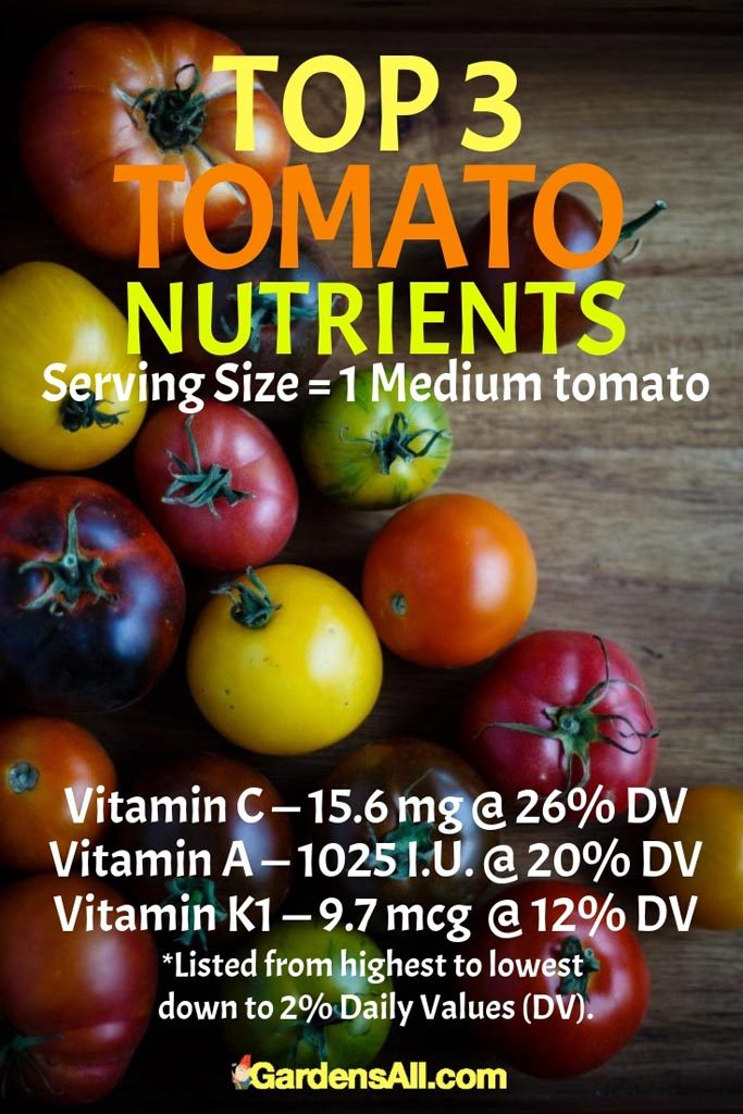 Highest in Vitamins C, A and K, you'll also get some doses of potassium, manganese and fiber and sprinklings of other nutrients. #Tomato #Tomatoes #Gardening #GrowingTomatoes #TomatoNutrition #NutritionForTomato #Vegetables