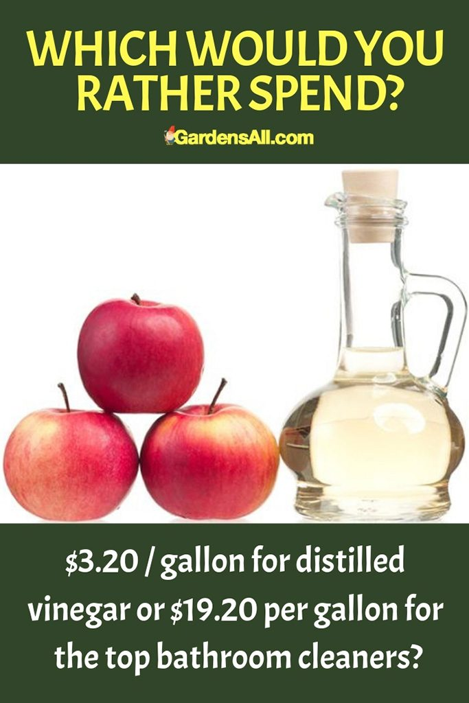 We save lots of money by using distilled vinegar for much of our household cleaning. #Vinegar #VinegarForCleaning #VinegarWeedKiller #AntKiller #Cleaning #AntSprayDIYHomeMade #Disinfectant #WeedKiller