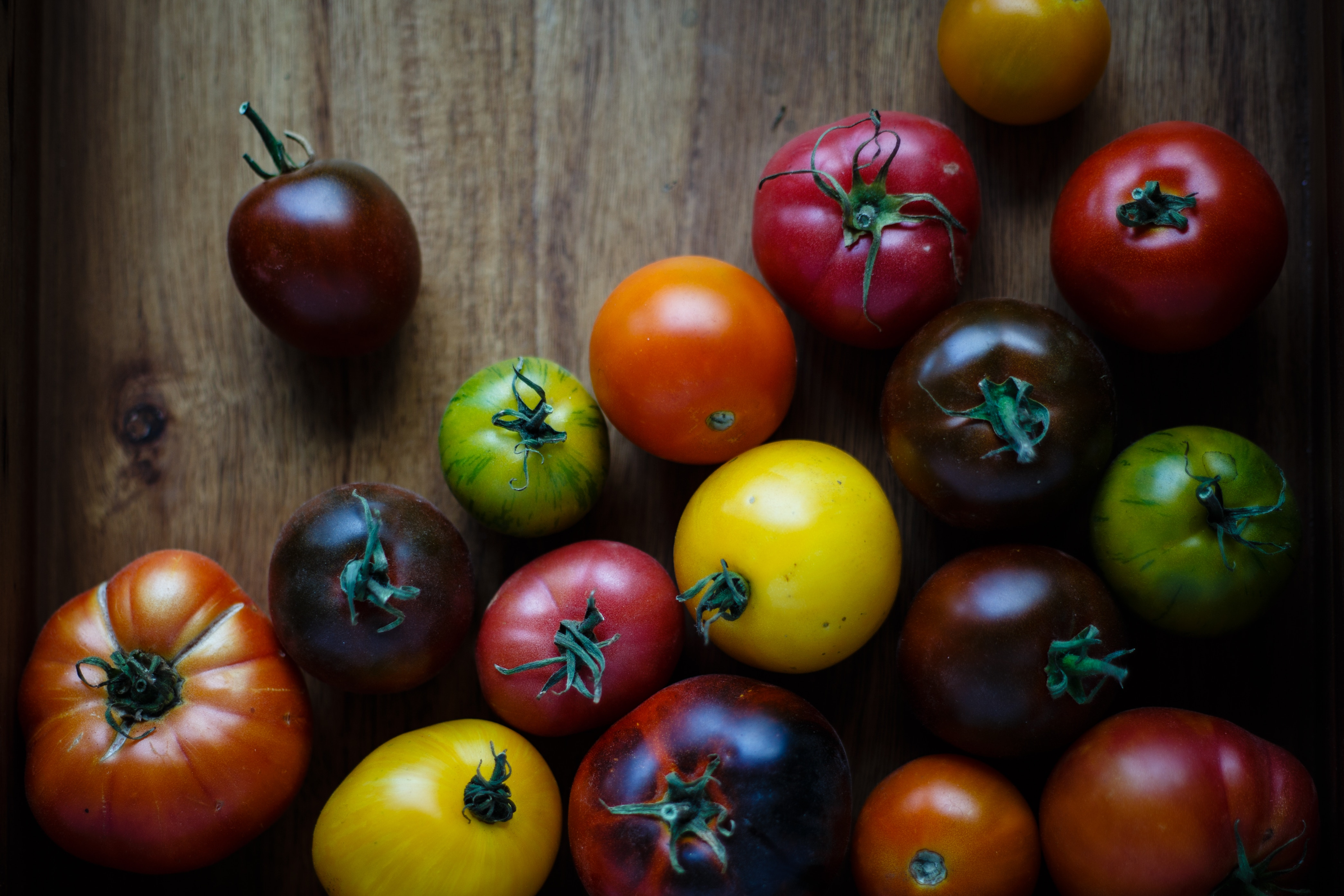 colored tomatoes, tomato nutrition