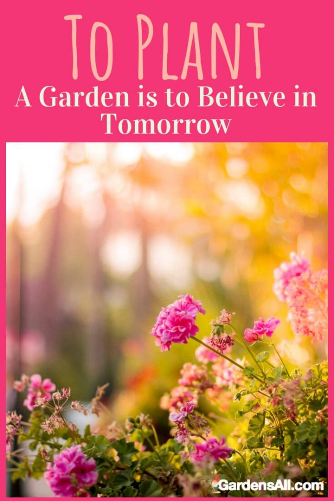 "One of the most popular quotes shared on gardening by gardeners is this quote by Audrey Hepburn: ""To plant a garden is to believe in tomorrow."" To Plant a Garden is to Believe in Tomorrow, Audrey Hepburn Quote #GardenMemes #ToPlantAGardenQuote #BelieveInTomorrowQuote #GardenQuotes"