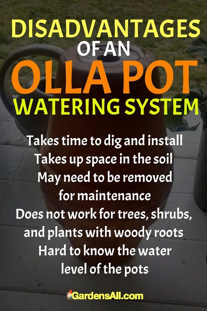 Olla Pots - Clay Water Jug Garden Irrigation System | GardensAll