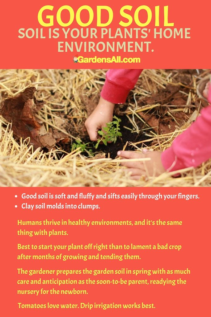 Good soil is soft and fluffy and sifts easily through your fingers. #Gardening #StrawBale #Conditioning #Layout #How #Flowers #Vegetables #Design #Problems #Ideas #Tips #Strawberries #Frame #Plants #Trellis #Herbs #Tomatoes #DIY
