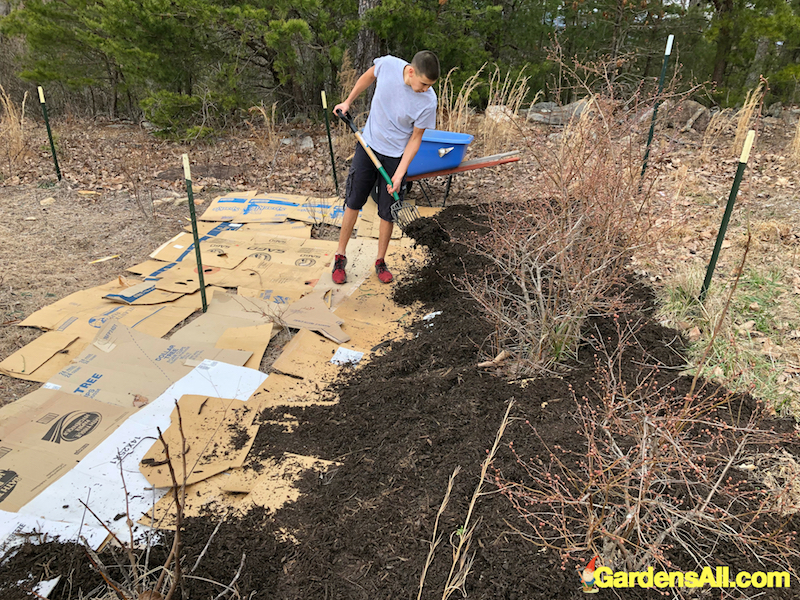 Natural Garden Weed Control that's Free