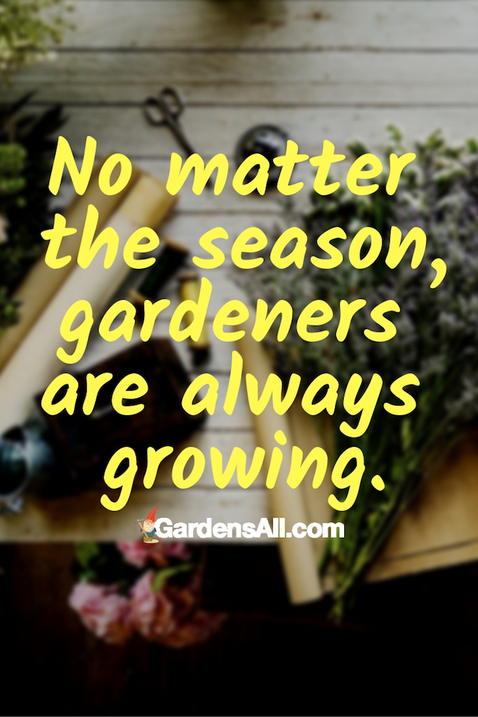 Anytime. Truly. Even in the winter when snowflakes start to fall, it doesn't mean that gardeners don't want to receive gifts for their garden. In fact, they will appreciate the kind thoughts that went into these meaningful gifts.  #Gardening #Tips #Ideas #Art #Decorations #Men #Women #Homemade #DIYGarden #VegetableGarden #RaisedBeds #GiftForGardeners #Christmas #GardenerGift