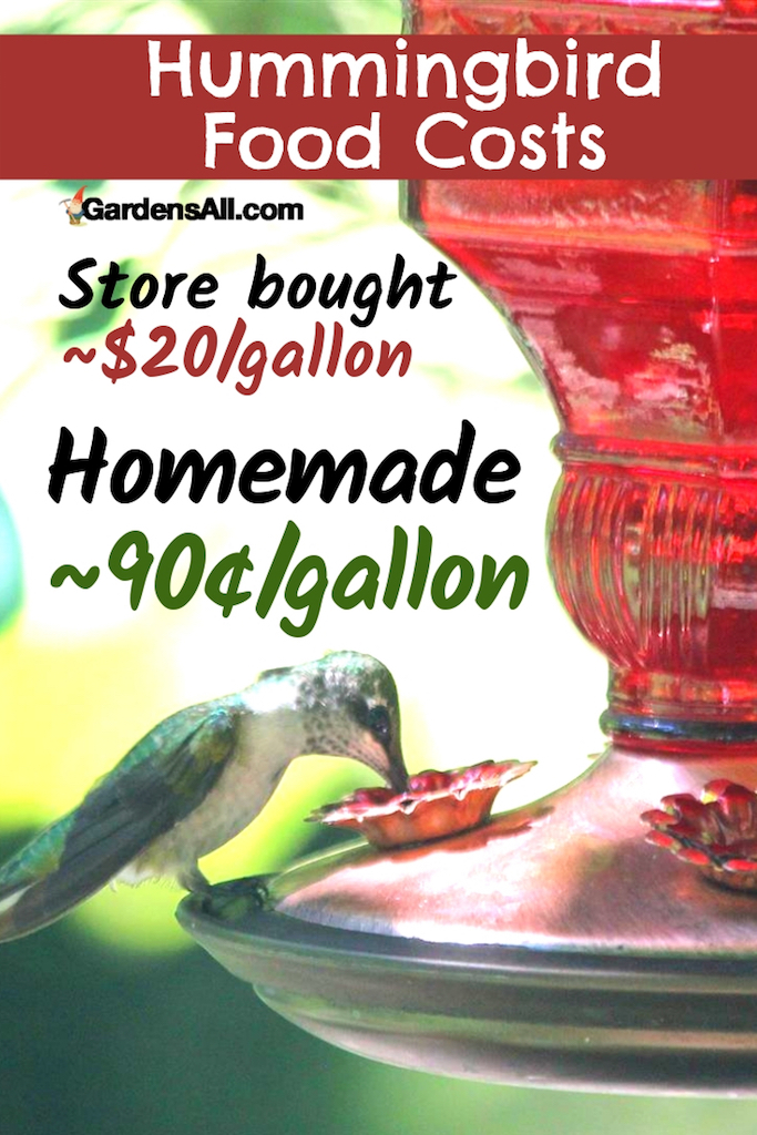 homemade hummingbird food cheaper