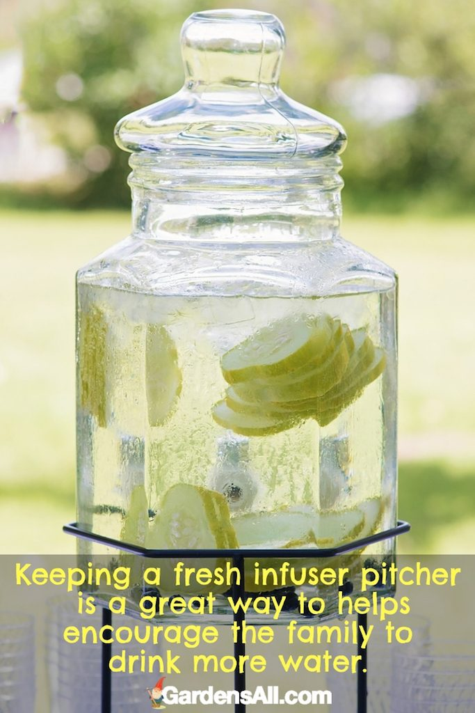 There are many benefits to cucumbers and cucumber water, including skin and bone health. #CucumberWater #GardensAll #Hydration #WeightLoss #Antioxidant #LowersBloodPressure #SkinHealth #BoneHealth