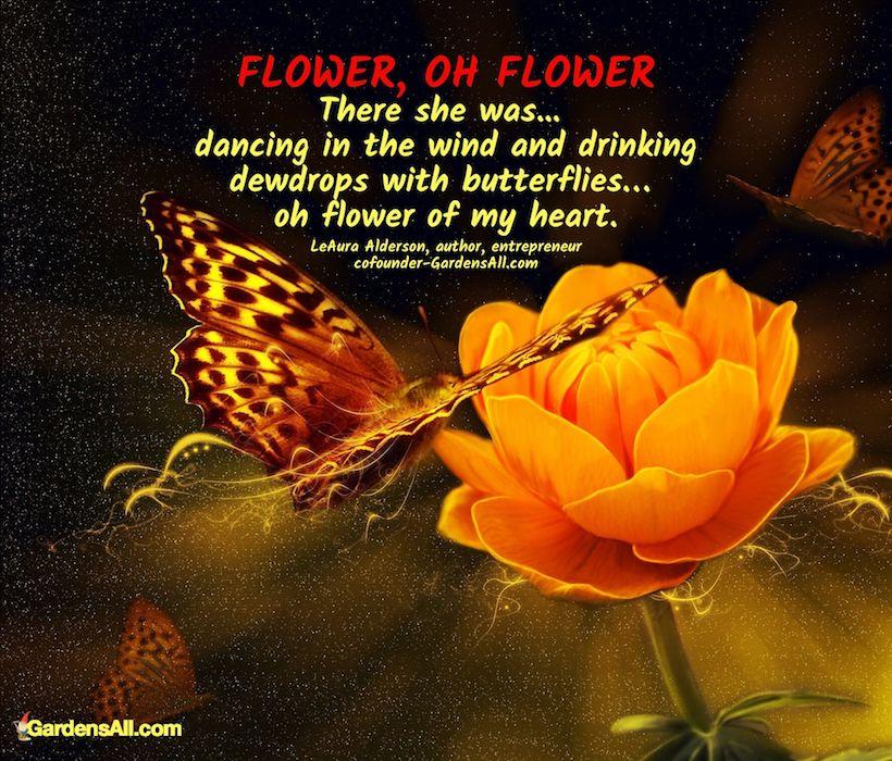 Plants for attracting butterflies. #ButterflyPlants #PlantsForAttractingPollinators #Butterflies #Quotes #Butterfly #Garden #Gardening #FlowerGardening #FlowerGardeningIdeas #Yarrow #SnapdragonFlower #PerennialsFlowers #PerennialsWithFlowers #Perennials #Flowers