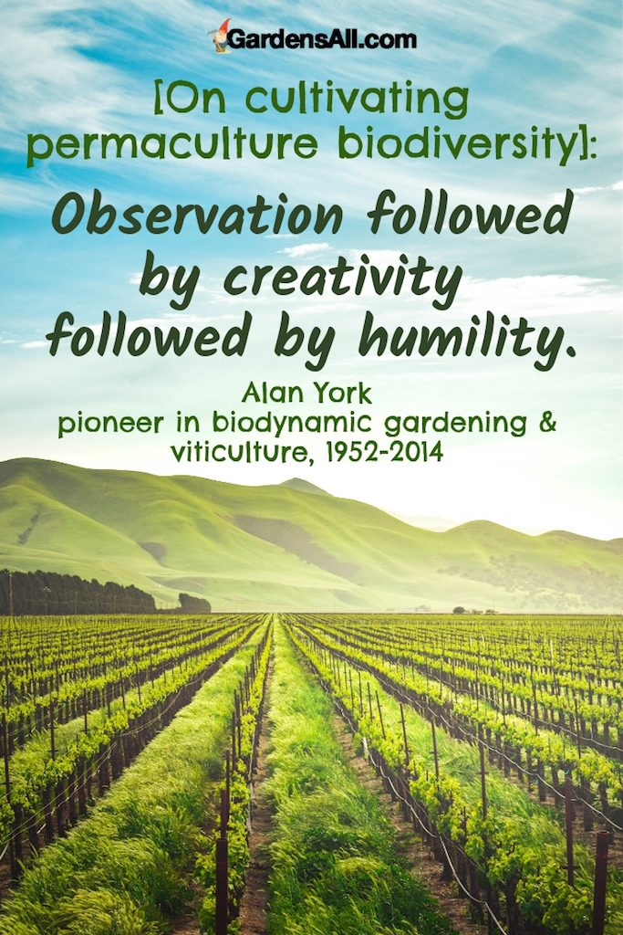 Observation followed by creativity followed by humility. #permaculture #farm #layout #design #ideas #landscapes #diy #howtobuild #architecture #urban #sutainabledesign #greenhouse #plants #gardening #plan #compost #homesteads #beds #backyards #howtomake #frontyards #beginner #principles #projects #tips #living #farming #orchard #community #article